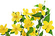 Bouquet Marsh Marigold Yellow Wildflowers In Vase stock photography