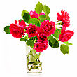 Bouquet Of Red Roses In A Glass stock photography