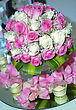 Rosa Bouquet Of White And Pink Rose stock photography