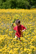 Boy picking flowers in field