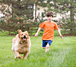 Boy Racing his Dog stock image