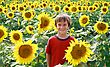 Boy Smiling in a Sunflower Field