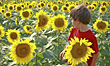 Boy Talking With Flower stock photography
