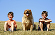 Children Boys and Dog stock photography