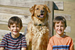 Boys and the Dog stock photo