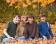 Boys in the Fall with the Dog stock photo