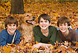 Children Boys in the Fall with the Dog stock image