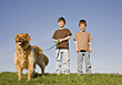 Boys Walking the Dog stock photo