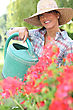 Brunette Watering Flowers stock photography