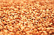Buckwheat Grains As Background. stock photography