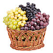 Bunch Of Fresh Grapes stock photography