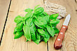 Bunch Of Green Basil With A Skein Of Twine And A Knife On A Wooden Boards Background stock image