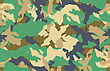 Camouflage Seamless Vector. In Panel Swatches We Find This Sample stock illustration