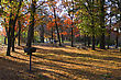 Camp Ground Set In The Autumn Colors. stock photo