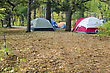 Camping And Tents Set Up In The Park stock image