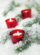 Candles on Snowy Branch stock image