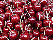 Caramelized Red Apples On White Wooden Sticks Ready For Party stock image