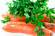 Carrot And Parsley stock image