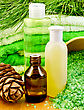 Cedar Oil In A Bottle, Branch Of Cedar Cones, Towels And Salt In A Wooden Bowl, Lotion, Shower Gel On A Wooden Board