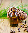 Cedar Oil In A Bottle, Cedar Cone, Cedar Nuts On The Background Of Wooden Boards stock photo