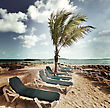 Chairs In A Tropical Beach stock image