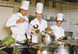 Chefs Preparing A Plate stock image