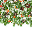 Christmas Background With Snow, Cones And Holly Berry Isolated On White stock photography