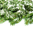 Christmas Background With Snow Isolated On White stock photo