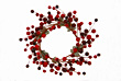 Christmas Berry Wreath stock image