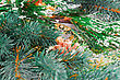 Decorated Christmas Decoration With Fir-tree Branch And Cones stock photo