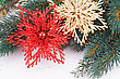 Christmas Decoration With Flowers And Fir-tree Branch
