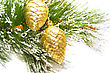Christmas Golden Cones Hanging On Fir Tree stock photography