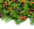 Christmas Green Framework With Cones And Holly Berry stock image