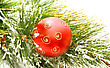 Christmas Red Ball On Fir Tree stock photo