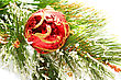 Christmas Red Ball Hanging On Fir Tree stock image
