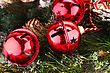 Christmas Red Balls With Fir Tree Branch Closeup Image stock image