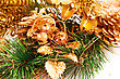 Christmas Tree Branch With Cones Closeup Image stock image