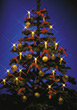 Christmas Tree & Lights stock photography