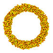 Circle Frame Made From Yellow Capsules