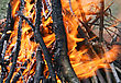 Close-up Of Bright And Hot Fire stock photography