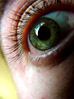 Close-up Of Green Eye stock photography