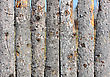 Close Up Of Wooden Fence Panels stock photography