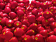Close-up Of Red Ripe Apples stock image