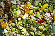 Close Up Salad Vegetable With Lentils Canada stock photo