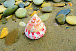 Closeup Of Colored Conical Sea Shell Over Wet Sand