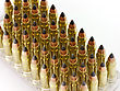 Closeup Of Hunting Bullets For Hunting Carbine