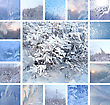 Collage Of Ice Pattern On Winter Glass And Plants Under The Snow stock photo