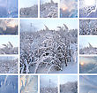 Collage Of Ice Pattern On Winter Glass And Plants Under The Snow stock image