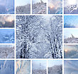 Collage Of Ice Pattern On Winter Glass And Trees Under The Snow stock image