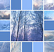 Collage Of Ice Patterns On Glass And Winter Trees stock photo